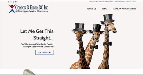 chiropractic web design